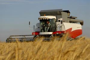 Аграрии Чечни приступили к уборке урожая