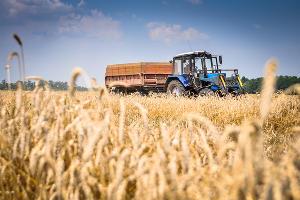 На Кубани назначат уполномоченного по правам фермеров