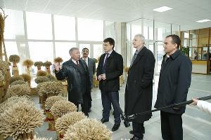 Кубань может стать центром развития научно-технологического направления в АПК
