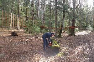 К новому туристскому сезону в Гузерипле откроют веревочный парк