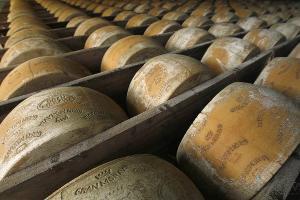 В Дагестане создадут полигоны для уничтожения санкционных товаров