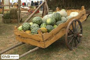 Власти Адыгеи планируют бороться с придорожными торговцами