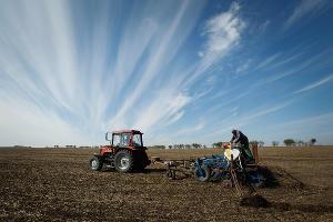 Кубань получила в собственность земли обанкротившихся рисоводческих предприятий