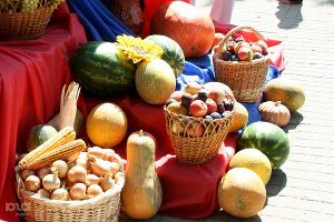 В Крыму избытки сельхозпродукции распродадут на ярмарке