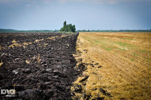 Аграрии Ставрополья осенью засеют 2 млн гектаров земли