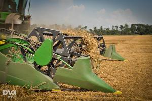 На Дону убрали более 80% полей, урожай превысил 7 млн тонн