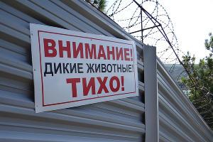 """Объявление на заборе """"дачи Ткачева"""""""