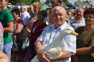 В Гулькевичском районе прошла ярмарка ко Дню урожая