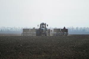 На Ставрополье засеяли 98% озимых полей