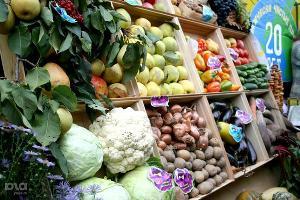 Оборот розничной торговли в Краснодаре вырос в январе-сентябре на 5%