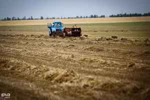 В Дагестане завершилась уборка зерновых