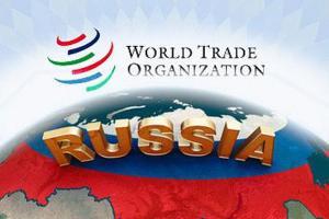 Турция готовится подать жалобу на санкции со стороны РФ в ВТО