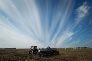 Около 100 земельных участков Сочи проверять на эффективность