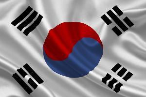 Представители Южной Кореи рассчитывают наладить экономические связи с Сочи при помощи культуры