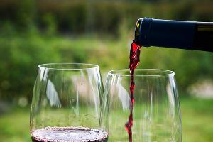 На Ставрополье производство алкоголя в 2015 году сократилось на 23%