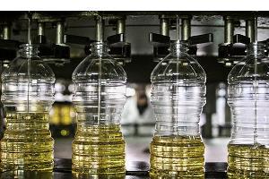 На Кубани произвели более 200 тыс. тонн подсолнечного масла из урожая 2015 года