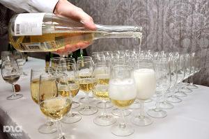 Главная встреча виноделов России состоится в Краснодарском крае 17 октября