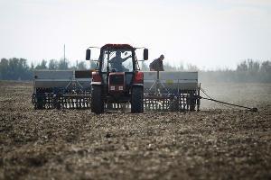 На Ставрополье 2 млн гектаров засеяли озимыми