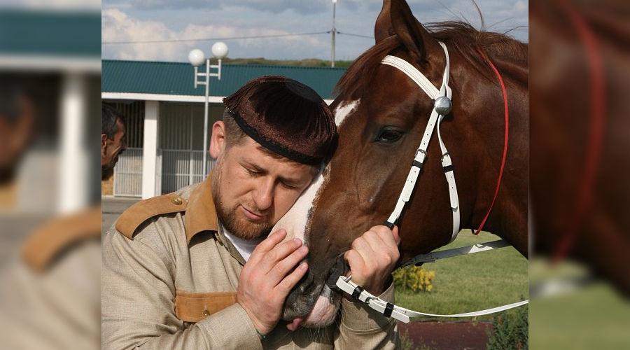 Рамзан Кадыров и лошадь ©http://instagram.com/alihan777/