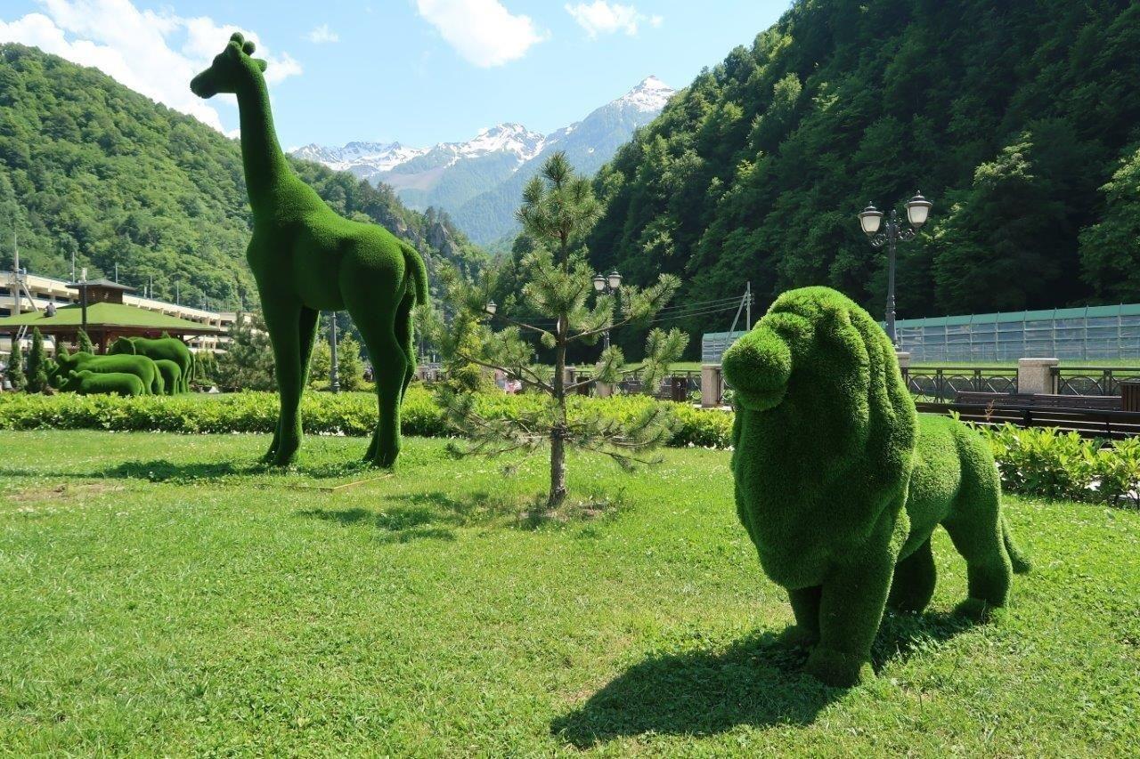 Всочинской Красной Поляне появился парк сзелеными фигурами зверей