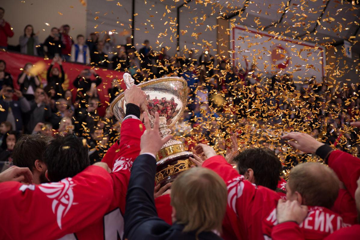 ХК «Ростов» стал обладателем Кубка Федерации сезона 2016/2017