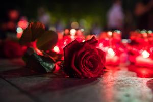 Всероссийская акция «Свеча памяти» в Краснодаре  ©Фото Елены Синеок, Юга.ру