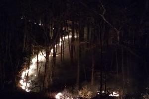 Пожар в районе поселка Планческая Щель ©Фото «Кубанских новостей»