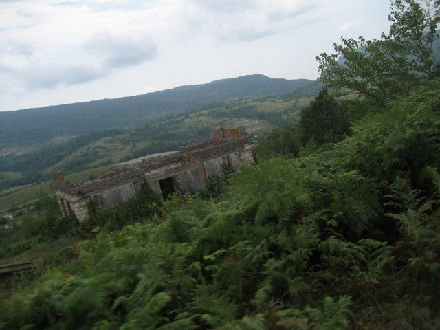 ВКБР отыскали потерявшихся влесу детей