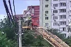 ©Кадр видео из телеграм-канала «Типичный Краснодар», t.me/krd_tipich_ru