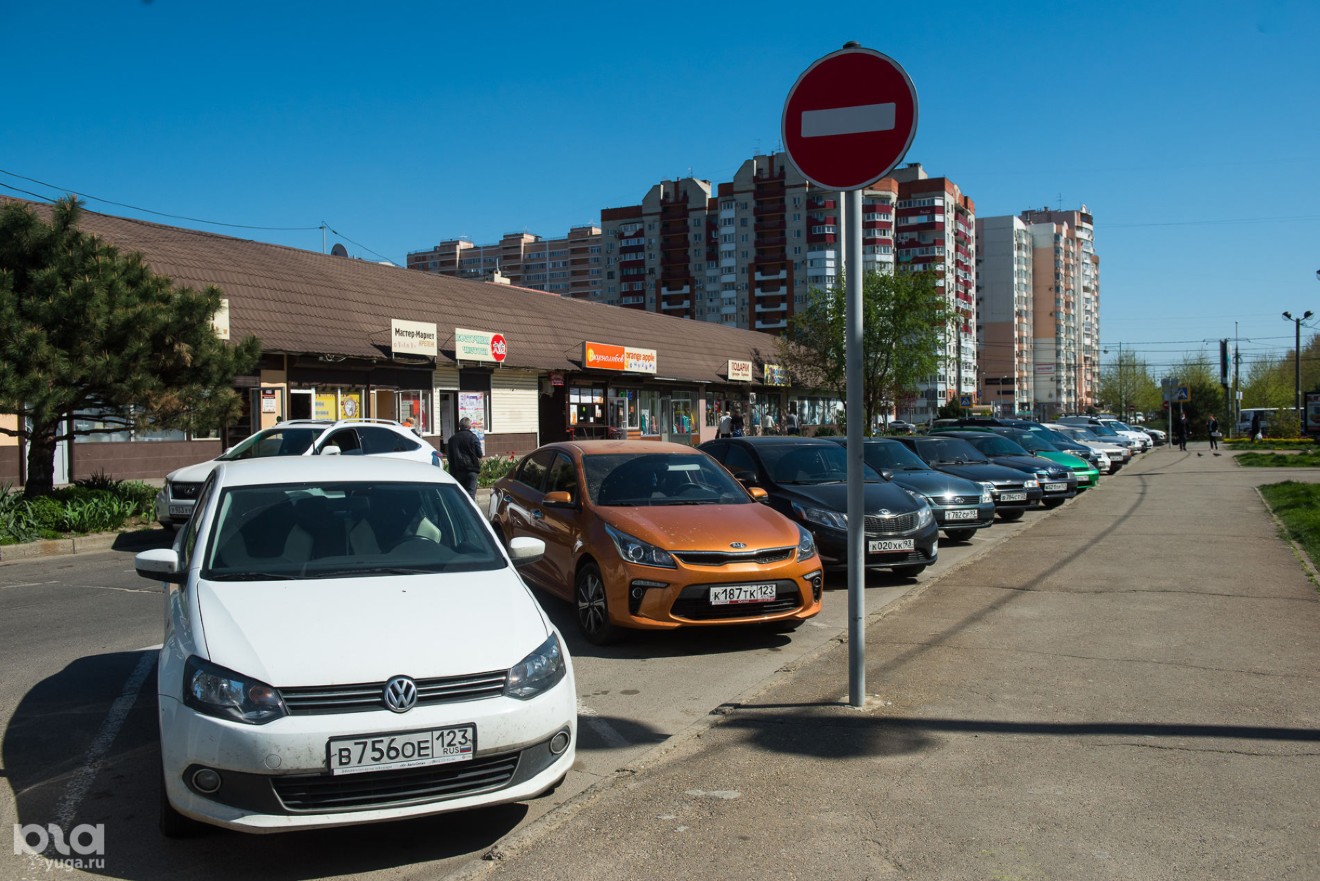 Платановый бульвар, Юбилейный микрорайон ©Фото Елены Синеок, Юга.ру