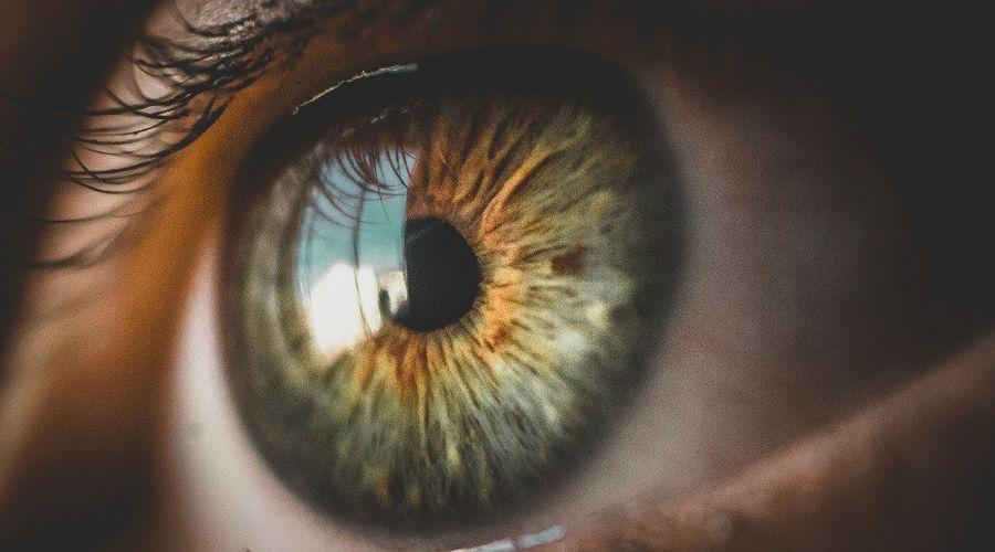 ©Изображение Bruno Henrique с сайта Pixabay.com
