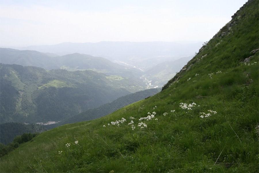 Вид на ущелье Большой Лиахвы с Галуаны рагъ над с.Кусджыта, Джавский р-н РЮО ©Фото с сайта wikimedia.org