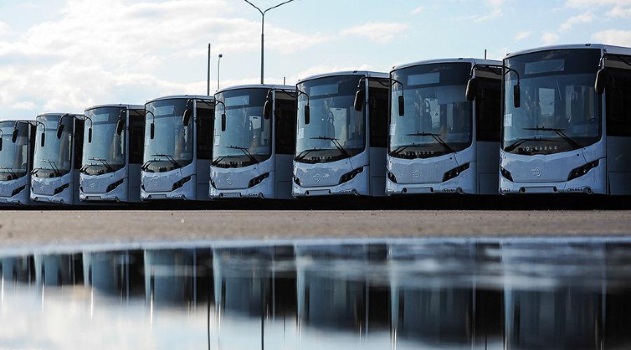 """В Сочи презентовали первую партию """"олимпийских"""" автобусов ©Фото Нины Зотиной, Юга.ру"""