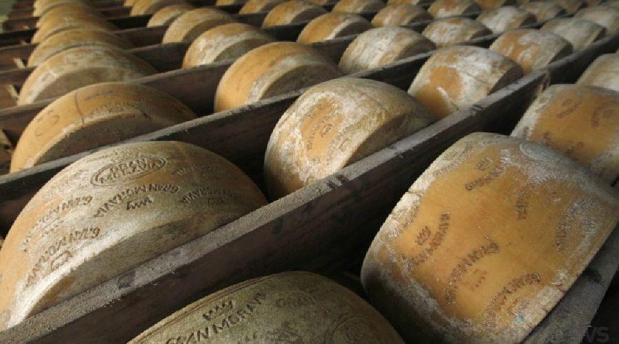 Сыр пармезан ©Фото bizera.com.ua