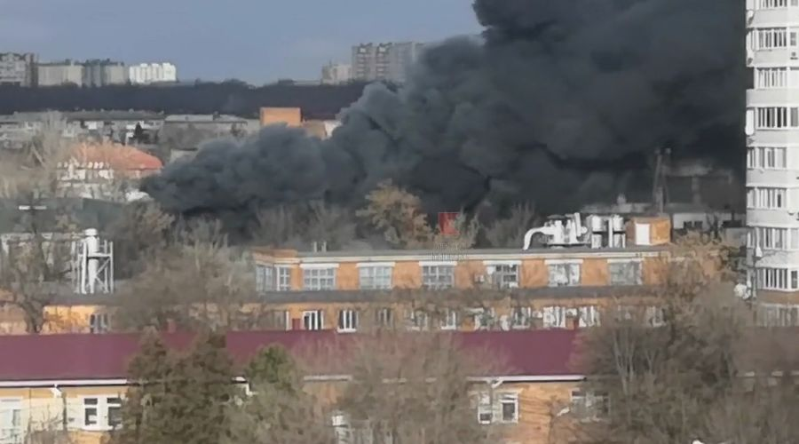©Скриншот видео из телеграм-канала «Типичный Краснодар», tmtr.me/krd_tipich_ru/21635