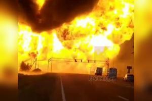 ©Кадр из видео в телеграм-канале «Типичный Краснодар», t.me/krd_tipich_ru
