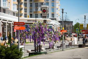 ТК «Центр Города» ©Фото Елены Синеок, Юга.ру