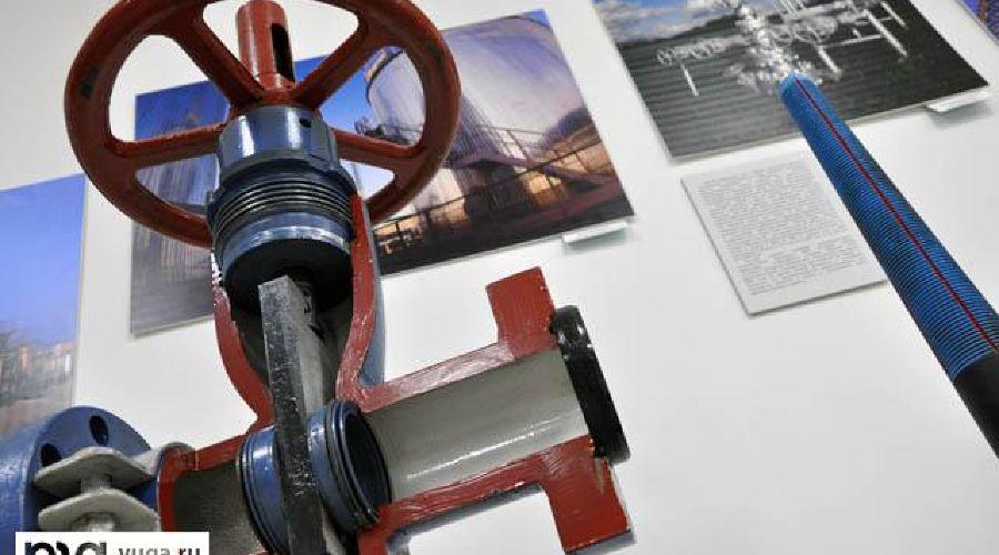 """Выставка """"Газпрома"""" ©Фото Юга.ру"""
