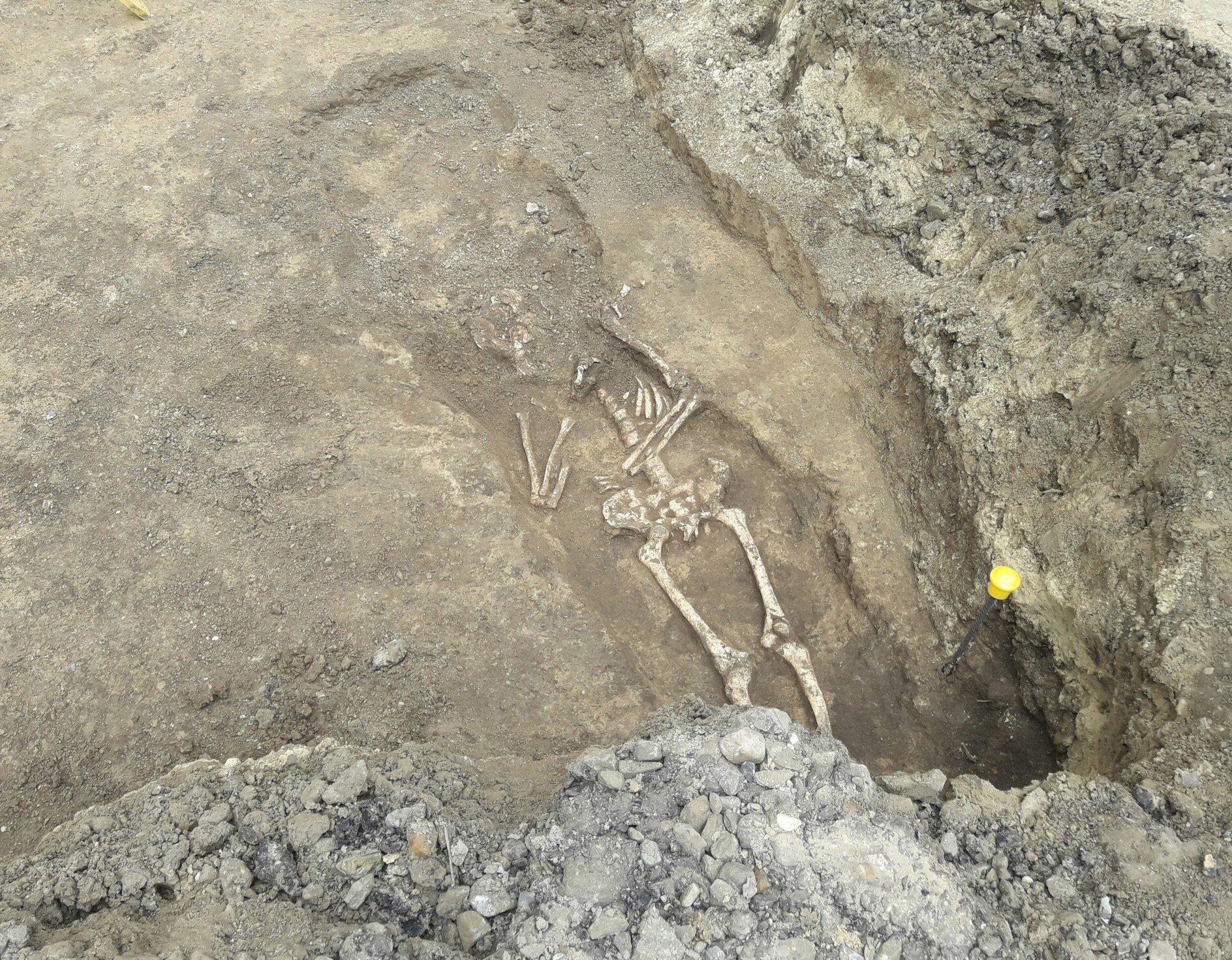 Старинный скелет отыскали при реконструкции Станиславского вРостове