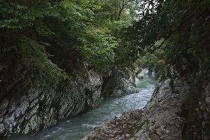 ©Фото пользователя Svetozar1 с сайта wikimedia.org