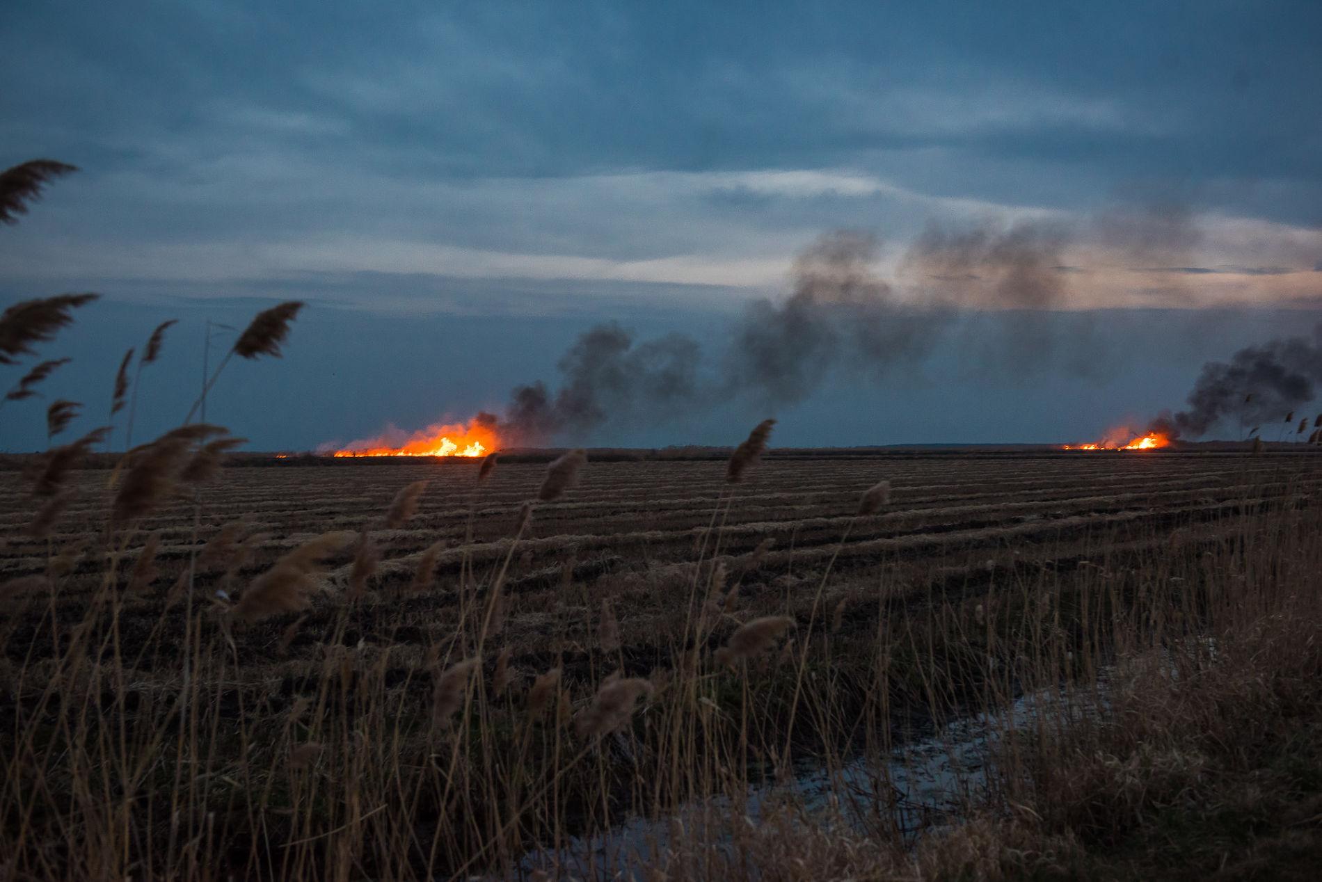 это горящее поле фото примеру