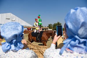 В Краснодаре открылась «Кубанская ярмарка» ©Фото Елены Синеок, Юга.ру