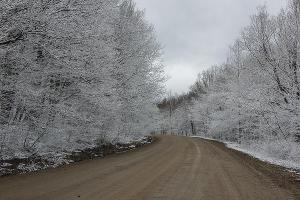 Дорога к пещерам ©Фото Елены Синеок, Юга.ру