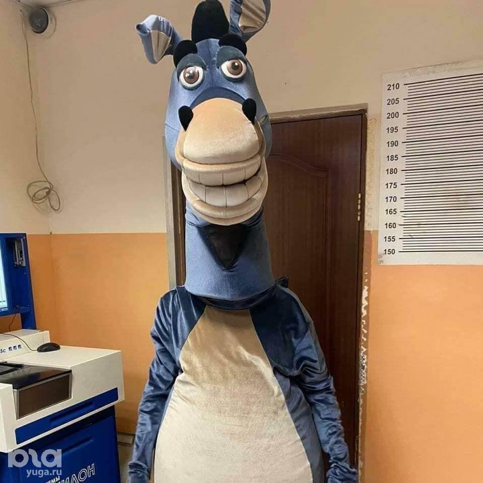 В Сочи аниматоров в костюмах коней арестовали на пять суток