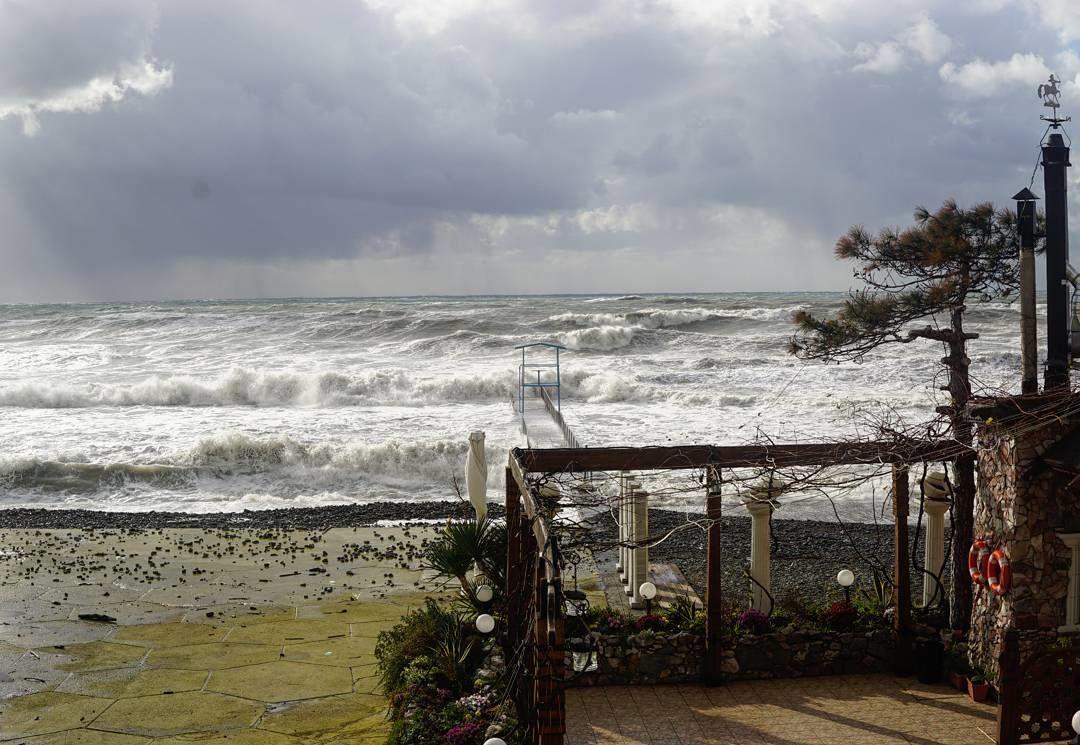 Циклон вСочи повалил неменее 150 деревьев и поломал крыши домов