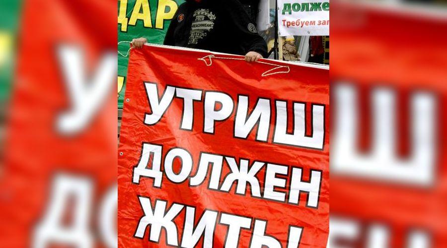 Митинг в защиту Утриша ©Фото Юга.ру