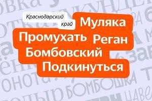 ©Изображение предоставлено «Яндексом»