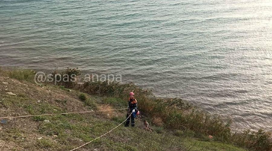 ©Фото из инстаграма главы МБУ «Служба спасения» Анапы, instagram.com/spas_anapa/