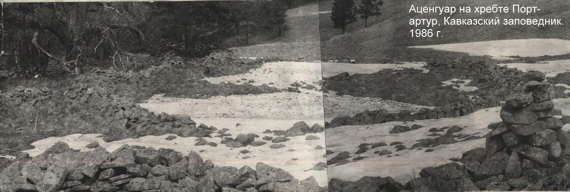 Ацангуар на хребте Порт-артур, 1986 год ©Фото пресс-службы Кавказского заповедника