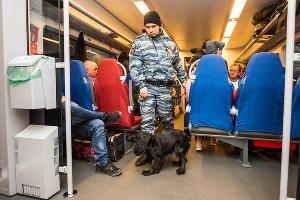 Кинолог проверяет «Ласточку» на наличие наркотических веществ у пассажиров ©Фото Елены Синеок, Юга.ру